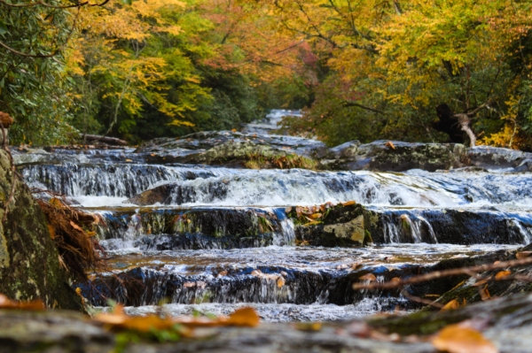 A beautiful river with rolling falls and autumn trees.